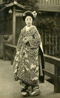 Maiko Chikayuu Vintage picture of Geisha, ca. I always wonder if the woman in the photos titled Geisha … Vintage Abbildungen, Vintage Kimono, Vintage Beauty, Vintage Pictures, Old Pictures, Old Photos, Samurai, Maneki Neko, Japan Art