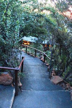 #ElephantRockLodge at #Nambiti Game Lodge, Romantic Escapes, Family Units, Lodges, Safari, Elephant, Africa, Explore, Rock