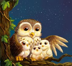 Daniel Howarth - Grandma Owl cover colour