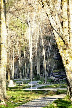 La Buhardilla de Yaya: Camino