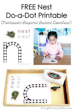 Free nest printables and Montessori-inspired nest activities for multiple ages; perfect for home or classroom; great for a nest unit or bird unit - Living Montessori Now Montessori Color, Montessori Education, Montessori Materials, Toddler Themes, Do A Dot, Abc Activities, Bird Theme, Classroom Themes, Preschool Kindergarten