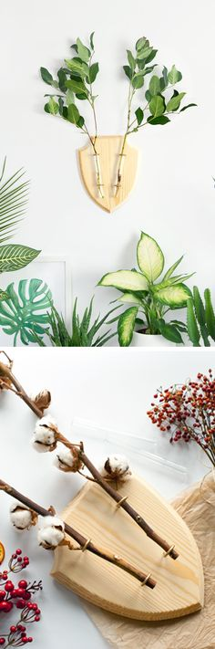 Green alternative for mounted stag head Home Projects, Projects To Try, Hanging Wall Planters, Fleur Design, Deco Nature, Idee Diy, Wild Style, Decoration, Diy Gifts