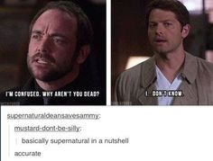 SuperNatural in a nutshell: John - Why aren't you dead? Sherlock: The fangirls will never know. Destiel, Sam Dean, Dean Winchester, Winchester Brothers, Jensen Ackles, Sammy Supernatural, Crowley Spn, Supernatural Symbols, Supernatural Bloopers
