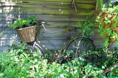 Um jardim inglês no campo.  Fotografia: Claire no Flickr.