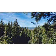 California National, State, Regional & Local Parks - CaliParks Burney Falls, Local Parks, Park Photos, Park City, Regional, State Parks, California, Camping, Memories
