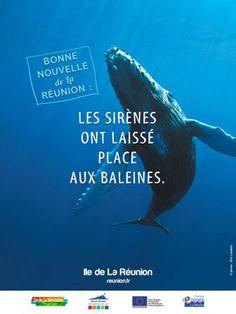 Com' de crise Ile de la Réunion by Being