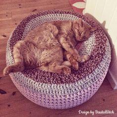 No, he is not a kitten anymore but he is still damn cute AND he loves my crochet pouf! Crochet Pouf, Love Crochet, Learn To Crochet, Crochet Pattern, Crochet Ideas, Crazy Cat Lady, Crazy Cats, Diy Stuffed Animals, Cool Cats
