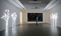 Lightweeds-SimonHeijdens-AKBANK_SANAT-Dec2015-Landscape-600.jpg 600×356 pixels