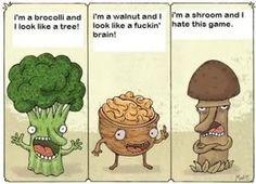 First Shiitake Grow - Gourmet and Medicinal Mushrooms - Shroomery Message Board