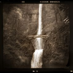 Multnomah Falls. I don't know why I never went to Oregon, I wasn't that far away for a few years.