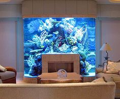 Kitchen Island Fish Tank 22 beautiful interiors with spectacular aquariums you have to see