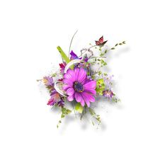 cluster__frame _рамки_рамки для фото (61).png ❤ liked on Polyvore featuring flowers, clusters, design, effect, flower fillers, borders, filler and picture frame