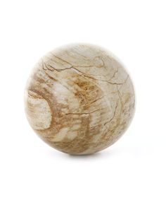 Petrified Wood Sphere - Small