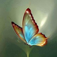 Let your most beautiful dream will become a reality. Good morning quotes for her. Butterfly Clip Art, Butterfly Pictures, Butterfly Wallpaper, Butterfly Mosaic, Butterfly Artwork, Butterfly Quotes, Rainbow Butterfly, Butterfly Tattoos, Beautiful Morning