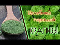 """Растение """"вечной молодости"""": снижает уровень сахара, очищает почки, омолаживает кожу, устраняет выпадение волос и не только! - Страница 2 из 2"""