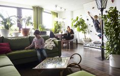 Urban apartments benefit from lots of indoor plants