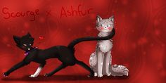 Scourge X Ashfur by ShootingStar2552.deviantart.com on @DeviantArt