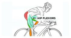 Hip Stretches for Cyclists: Relieve Tight Hip Flexors - I Love Bicycling Best Hip Stretches, Sprint Triathlon, Tight Hip Flexors, Knee Up, Tight Hips, Hip Openers, Hip Muscles, Hip Workout, Cyclists