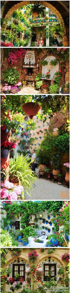 #garden in #Cordoba, #Spain