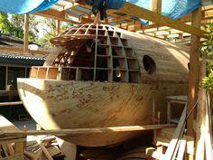Tsunami-proof house boat built using plywood