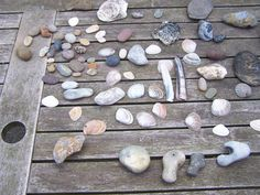 stones and shells  by Norbert Reiss