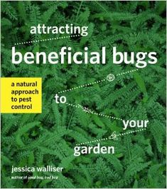 Attracting Beneficial Bugs book cover