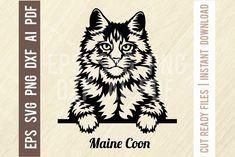 Wood Laser Ideas, Vector Design, Logo Design, Pet Logo, Face Cut, Cat Silhouette, Animal Logo, Cat Face, Maine Coon