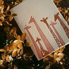 Set of 4 Letterpress Giraffe Cards Lettering, Typography Design, Hand Made Greeting Cards, Letterpress Printing, Card Making Inspiration, Illustrations, Graphic Design Inspiration, Paper Goods, Print Design