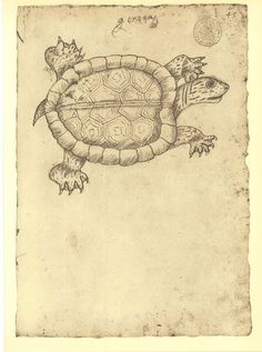 Vintage Print of a Turtle of the Fauna of Maranhao, Drawing by Frei Cristovao de Lisboa, 17th Century