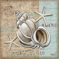 CUADROSTOCK.COM Tienda online de cuadros. Linen Shells IV