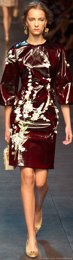 Dolce & Gabbana | S/S 2014 RTW | The House of Beccaria