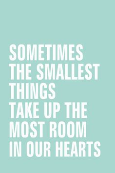 Sometimes the smallest things take up the most room in our hearts.