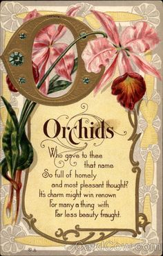 Orchids Moto Series 6 Who gave to thee that name So full of homely and most pleasant thought? It's charm might win renown For many a thing with Far less beauty fraught
