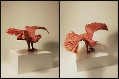 Eagle - Nguyen Hung Cuong   by João Charrua