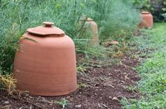 terracotta_garden_cloche_at_monticello