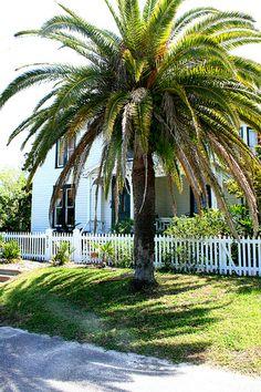 Amelia Island, FL.