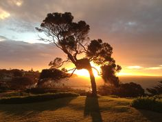 Heavenly Portsea Cliff Top