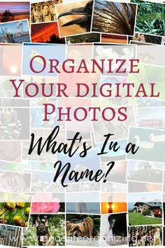 It's important to rename your digital photos so you can find them easier. From GoodLifeOrganizing.net