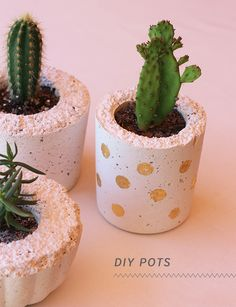 craft with white cement Weißzement DIY Blumentopf-Kreative DIY Blumentopf Ideen White Cement DIY Flower Pot-Creative DIY Flower Pot Ideas Cement Flower Pots, Concrete Pots, Concrete Casting, Concrete Design, Dyi, Diy Concrete Planters, Fall Planters, Succulents In Containers, Container Flowers