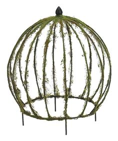 Do, easy --- 15'' Moss Dome Topiary by Allstate Floral & Craft #zulily #zulilyfinds