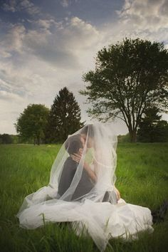Wedding picture that incorporates the bride's veil.