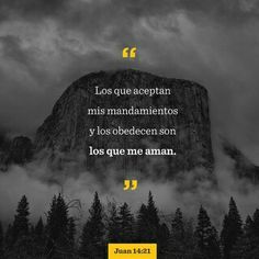 Those who accept my commandments and obey them are the ones who love me. And because they love me, my Father will love them. And I will love them and reveal myself to each of them. Words Of Jesus, God Jesus, Word Of God, Jesus Christ, Jesus Help, Jesus Bible, King Jesus, Thy Word, Biblia Online