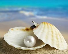 Pearl: my birthstone. Naturally beautiful