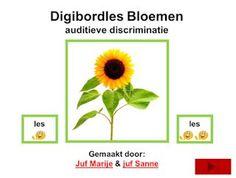 digibordles bloemen woordstukjes