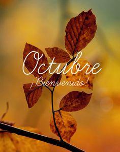 Octubre ¡Bienvenido!