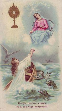 Free Catholic Holy Cards - Catholic Prayer Cards - St Therese of Lisieux - St. Joseph - Our Lady of Guadalupe - Sacred Heart of Jesus - John Paul the Great - Support Missionary work Catholic Saints, Catholic Art, Religious Art, Roman Catholic, Patron Saints, Blessed Mother Mary, Blessed Virgin Mary, Ave Maris Stella, Vintage Holy Cards