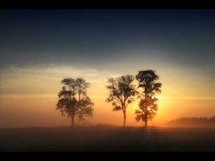 Chopin - Nocturne Op.48 No.2