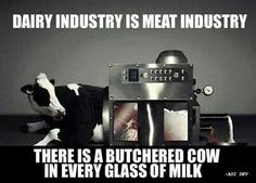 The animal agriculture industry is never ethical or humane. They've lied to us and their days of using sentient beings are almost up.