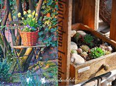 Gartenbuddelei: März 2014