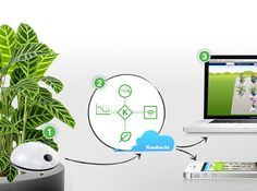 Wi-Fi Plant Sensor - This intelligent assistant for optimal plant care notifies you if your plants need water or fertilizer. The free Koubachi App visualizes your plants and sends care tips for all common house plants. //   #iphone #gadget